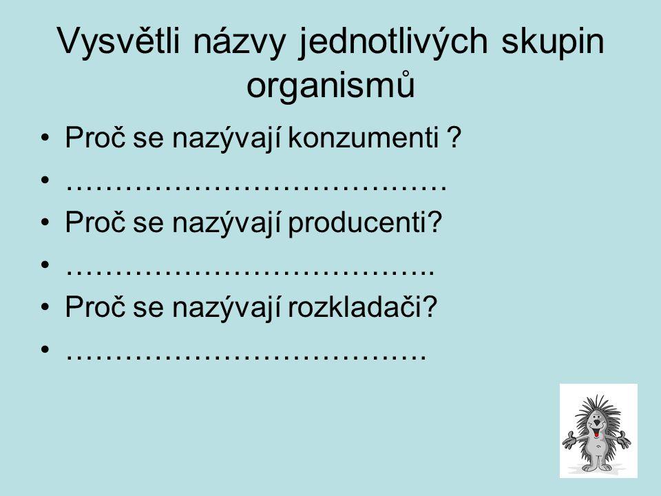 Vysvětli názvy jednotlivých skupin organismů Proč se nazývají konzumenti ? ………………………………… Proč se nazývají producenti? ……………………………….. Proč se nazývají
