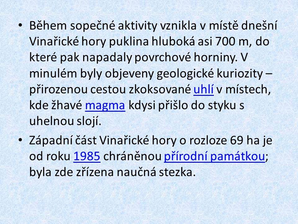 Během sopečné aktivity vznikla v místě dnešní Vinařické hory puklina hluboká asi 700 m, do které pak napadaly povrchové horniny. V minulém byly objeve