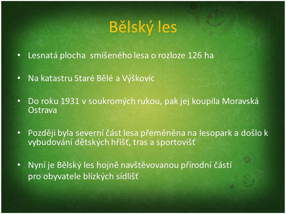 Bělský les Lesnatá plocha smíšeného lesa o rozloze 126 ha Na katastru Staré Bělé a Výškovic Do roku 1931 v soukromých rukou, pak jej koupila Moravská