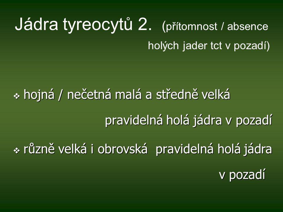 Jádra tyreocytů 2.
