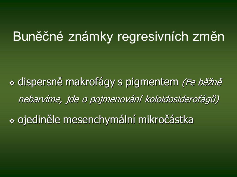Závěr 4.Vyjádření případného rozporu s předpokládanou (a cytologicky nepodpořenou) klin.