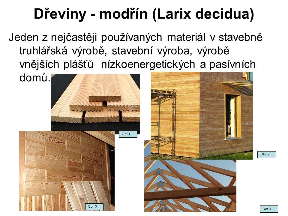 Dřeviny-modřín opadavý (Larix decidua) Obr.5Obr.6