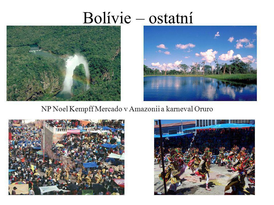 Bolívie – ostatní NP Noel Kempff Mercado v Amazonii a karneval Oruro