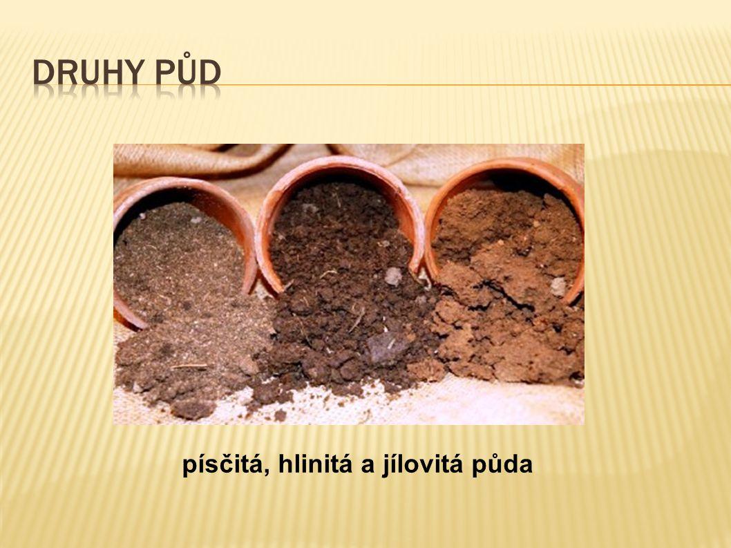 písčitá, hlinitá a jílovitá půda