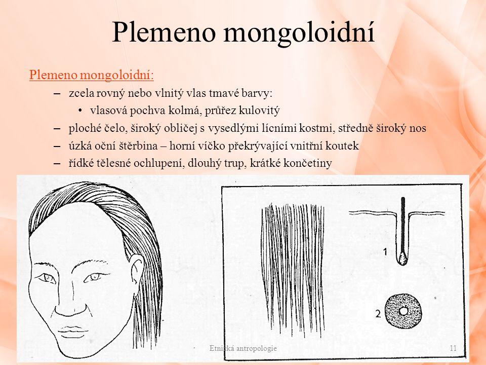 Plemeno mongoloidní Plemeno mongoloidní: – zcela rovný nebo vlnitý vlas tmavé barvy: vlasová pochva kolmá, průřez kulovitý – ploché čelo, široký oblič
