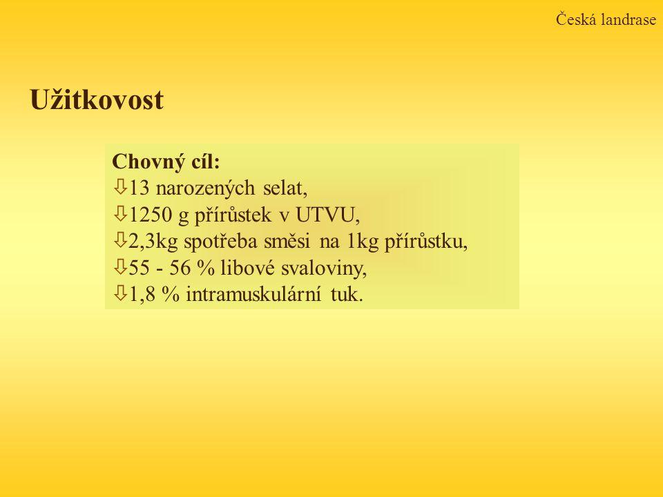 Česká landrase Chovný cíl: ò 13 narozených selat, ò 1250 g přírůstek v UTVU, ò 2,3kg spotřeba směsi na 1kg přírůstku, ò 55 - 56 % libové svaloviny, ò 1,8 % intramuskulární tuk.