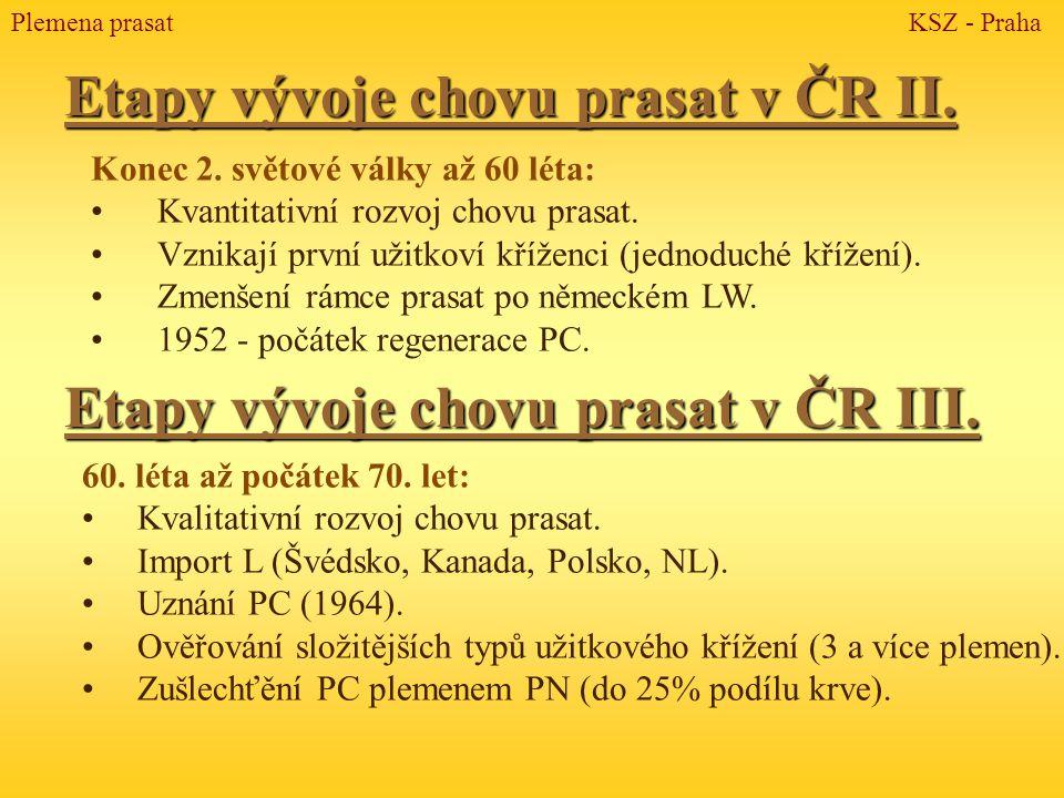 Přeštické černostrakaté prase (Pc) Plemena prasat KSZ - Praha