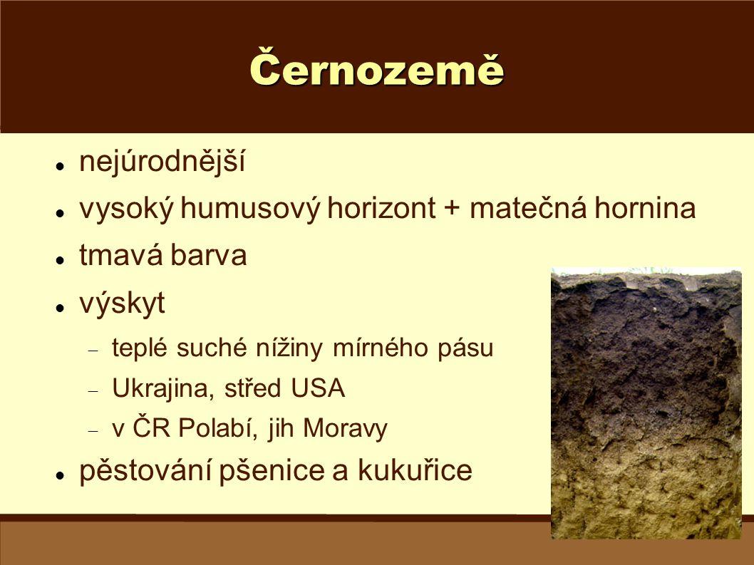 Černozemě nejúrodnější vysoký humusový horizont + matečná hornina tmavá barva výskyt  teplé suché nížiny mírného pásu  Ukrajina, střed USA  v ČR Po