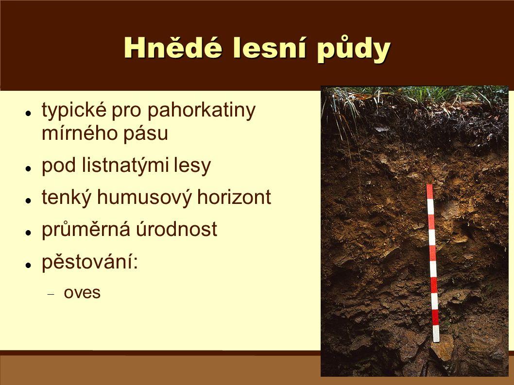 Hnědé lesní půdy typické pro pahorkatiny mírného pásu pod listnatými lesy tenký humusový horizont průměrná úrodnost pěstování:  oves