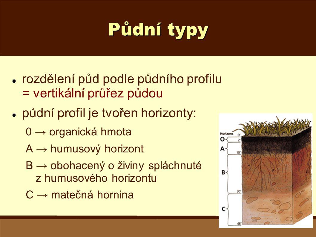 Půdní typy rozdělení půd podle půdního profilu = vertikální průřez půdou půdní profil je tvořen horizonty: 0 → organická hmota A → humusový horizont B