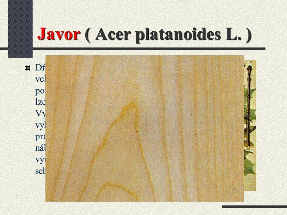 Jasan ( JS ) Použití : Stavba vozů a karosérií, sportovní náčiní, okrasné dýhy a nábytek.