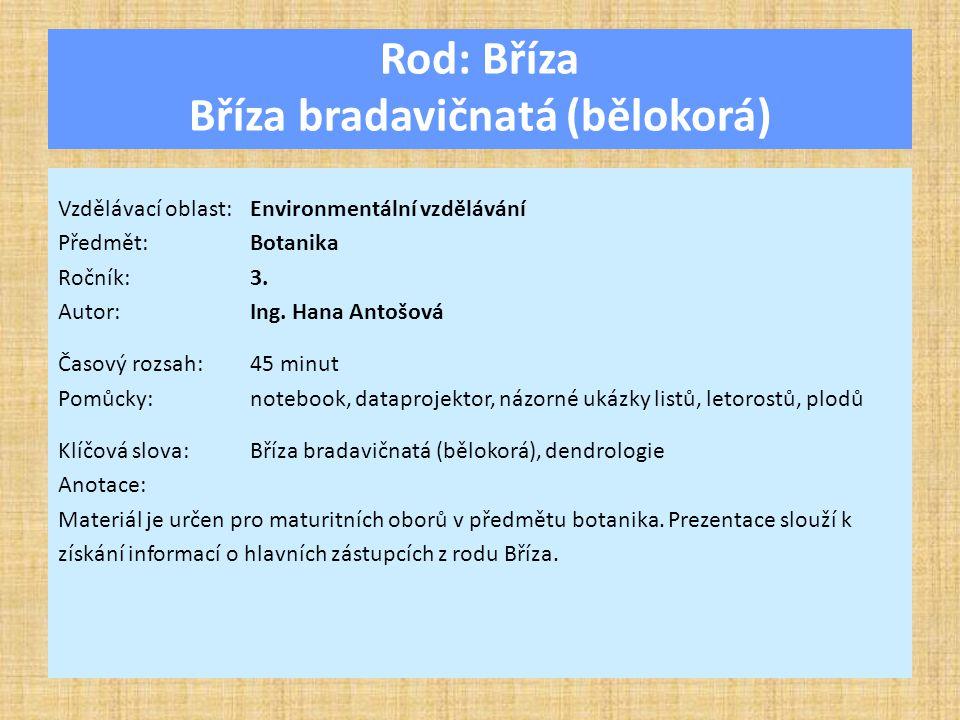 Rod: Bříza Bříza bradavičnatá (bělokorá) Vzdělávací oblast:Environmentální vzdělávání Předmět:Botanika Ročník:3.