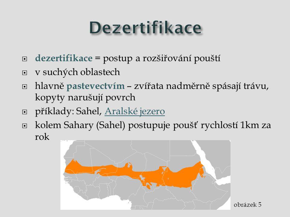  dezertifikace = postup a rozšiřování pouští  v suchých oblastech  hlavně pastevectvím – zvířata nadměrně spásají trávu, kopyty narušují povrch  p