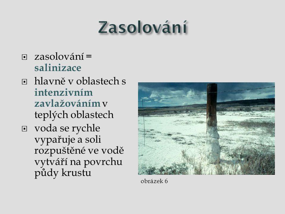  zasolování = salinizace  hlavně v oblastech s intenzivním zavlažováním v teplých oblastech  voda se rychle vypařuje a soli rozpuštěné ve vodě vytv