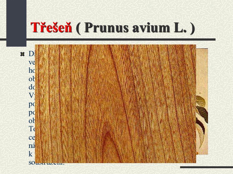 Topol ( TP ) Použití : Rýsovací stoly, umělecké prvky, zápalky, překližkové dýhy a laťovkové středy (poddýžky), nábytek, výroba papíru. Odolnost : Neo