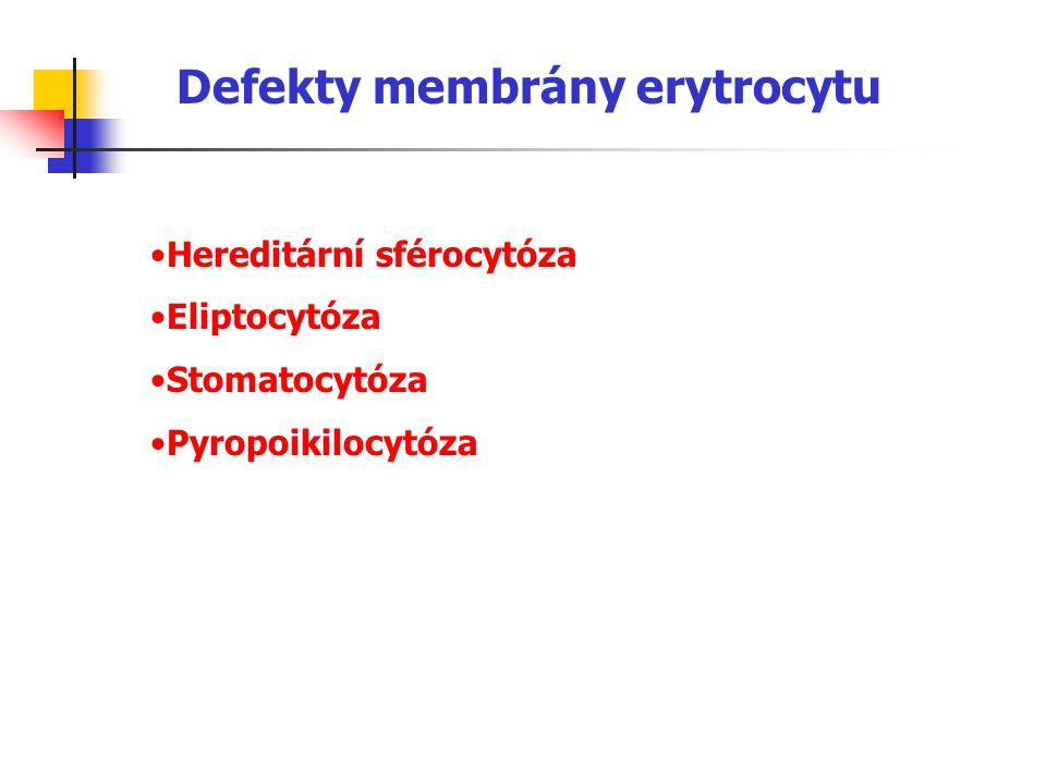 Defekty membrány erytrocytu Hereditární sférocytóza Eliptocytóza Stomatocytóza Pyropoikilocytóza