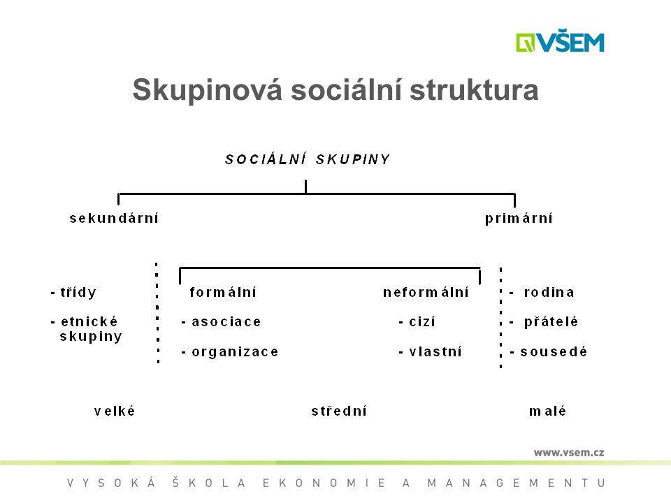 Skupinová sociální struktura