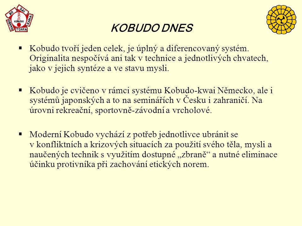 KOBUDO DNES  Kobudo tvoří jeden celek, je úplný a diferencovaný systém. Originalita nespočívá ani tak v technice a jednotlivých chvatech, jako v jeji