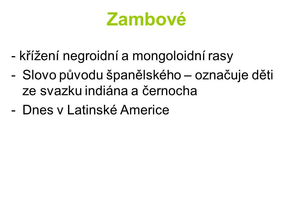 Zambové - křížení negroidní a mongoloidní rasy -Slovo původu španělského – označuje děti ze svazku indiána a černocha -Dnes v Latinské Americe