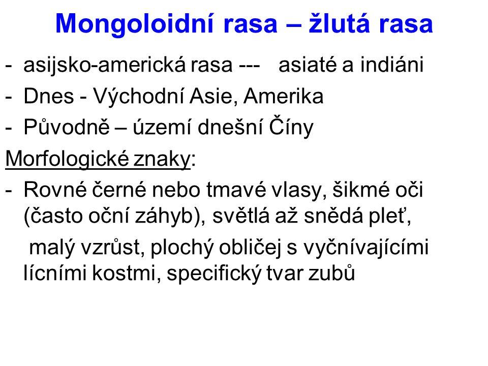 Mongoloidní rasa – žlutá rasa -asijsko-americká rasa --- asiaté a indiáni -Dnes - Východní Asie, Amerika -Původně – území dnešní Číny Morfologické zna
