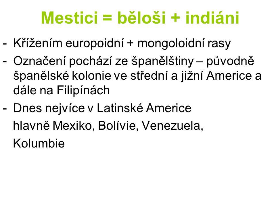 Mestici = běloši + indiáni -Křížením europoidní + mongoloidní rasy -Označení pochází ze španělštiny – původně španělské kolonie ve střední a jižní Ame