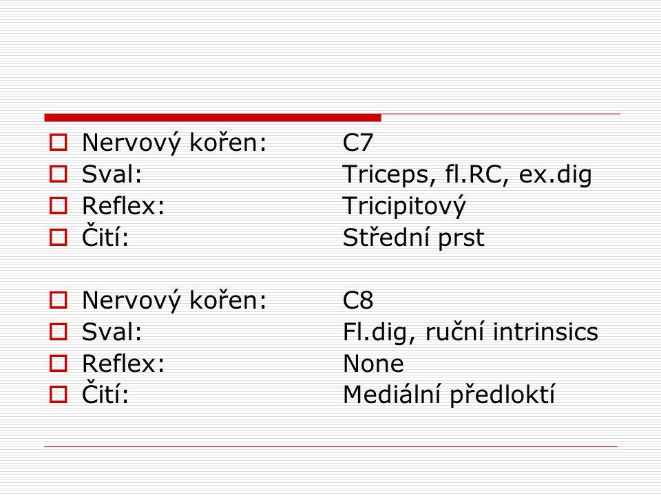  Nervový kořen:  Sval:  Reflex:  Čití:  Nervový kořen:  Sval:  Reflex:  Čití: C7 Triceps, fl.RC, ex.dig Tricipitový Střední prst C8 Fl.dig, ru