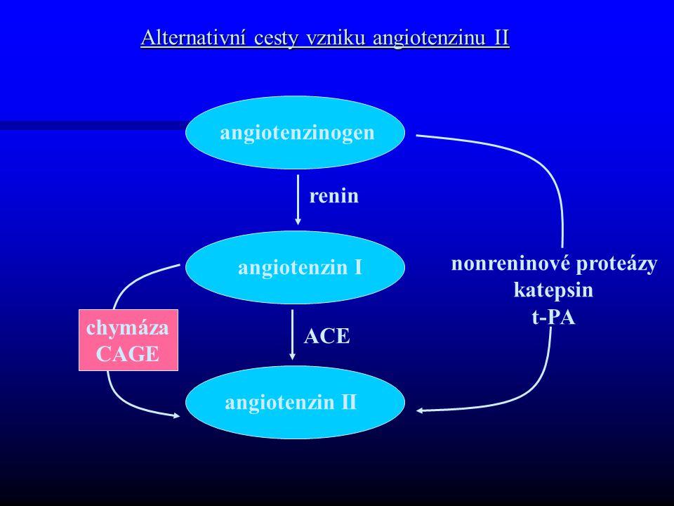 Alternativní cesty vzniku angiotenzinu II angiotenzinogen angiotenzin I angiotenzin II renin ACE nonreninové proteázy katepsin t-PA chymáza CAGE
