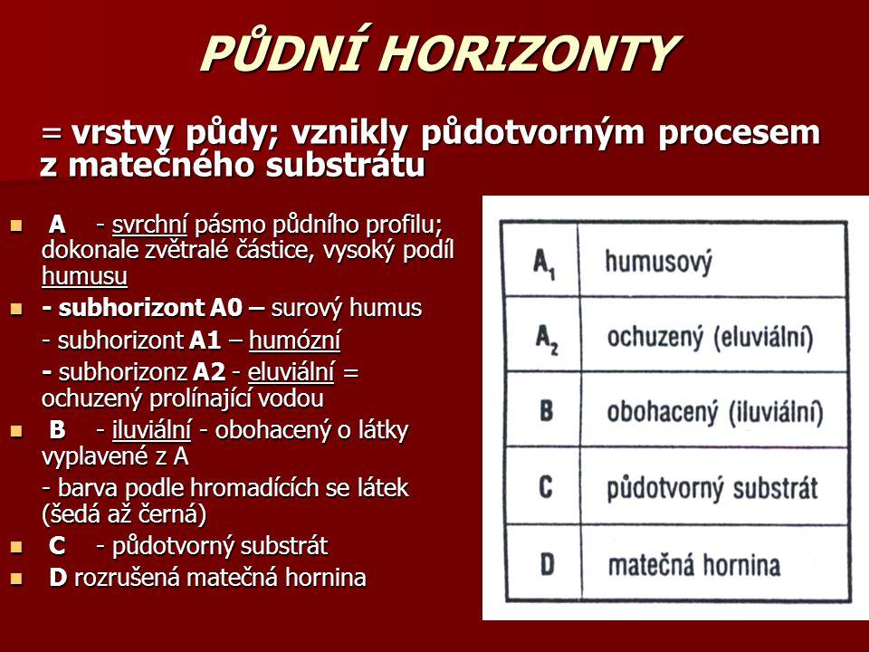PŮDNÍ HORIZONTY A- svrchní pásmo půdního profilu; dokonale zvětralé částice, vysoký podíl humusu A- svrchní pásmo půdního profilu; dokonale zvětralé částice, vysoký podíl humusu - subhorizont A0 – surový humus - subhorizont A0 – surový humus - subhorizont A1 – humózní - subhorizonz A2 - eluviální = ochuzený prolínající vodou B- iluviální - obohacený o látky vyplavené z A B- iluviální - obohacený o látky vyplavené z A - barva podle hromadících se látek (šedá až černá) C- půdotvorný substrát C- půdotvorný substrát D rozrušená matečná hornina D rozrušená matečná hornina = vrstvy půdy; vznikly půdotvorným procesem z matečného substrátu