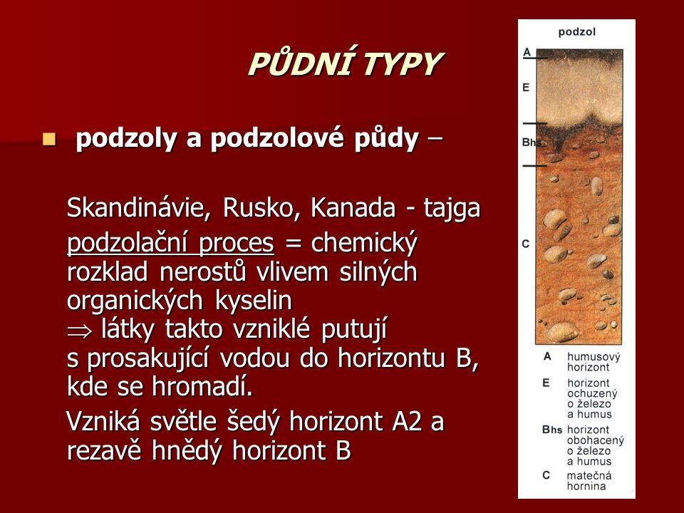 PŮDNÍ TYPY podzoly a podzolové půdy – podzoly a podzolové půdy – Skandinávie, Rusko, Kanada - tajga podzolační proces = chemický rozklad nerostů vlive