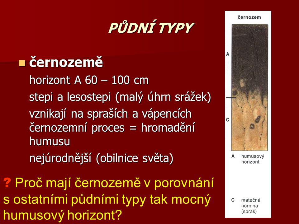 PŮDNÍ TYPY černozemě černozemě horizont A 60 – 100 cm stepi a lesostepi (malý úhrn srážek) vznikají na spraších a vápencích černozemní proces = hromad
