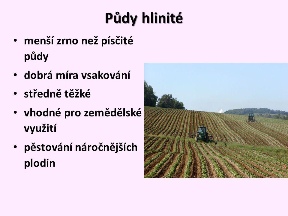 Půdy hlinité menší zrno než písčité půdy dobrá míra vsakování středně těžké vhodné pro zemědělské využití pěstování náročnějších plodin