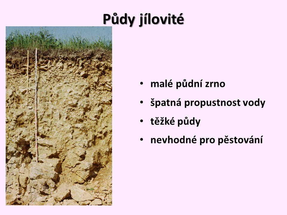 Půdy jílovité malé půdní zrno špatná propustnost vody těžké půdy nevhodné pro pěstování