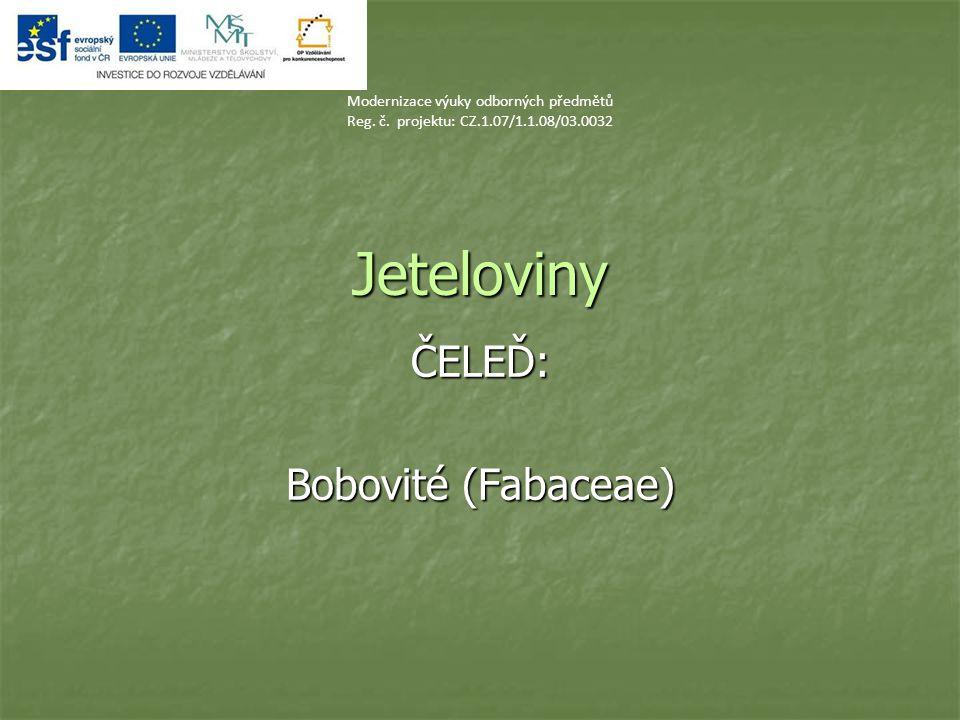 Jeteloviny ČELEĎ: Bobovité (Fabaceae) Modernizace výuky odborných předmětů Reg. č. projektu: CZ.1.07/1.1.08/03.0032