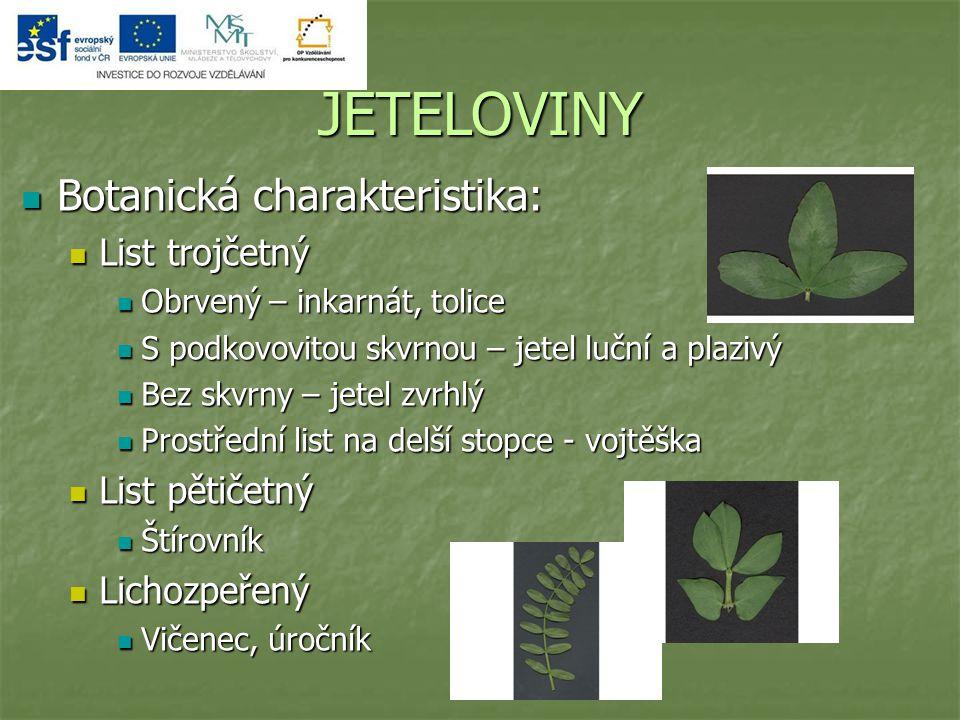 JETELOVINY Botanická charakteristika: Botanická charakteristika: List trojčetný List trojčetný Obrvený – inkarnát, tolice Obrvený – inkarnát, tolice S