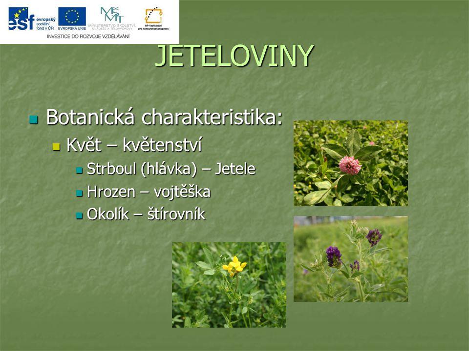 JETELOVINY Botanická charakteristika: Botanická charakteristika: Květ – květenství Květ – květenství Strboul (hlávka) – Jetele Strboul (hlávka) – Jetele Hrozen – vojtěška Hrozen – vojtěška Okolík – štírovník Okolík – štírovník