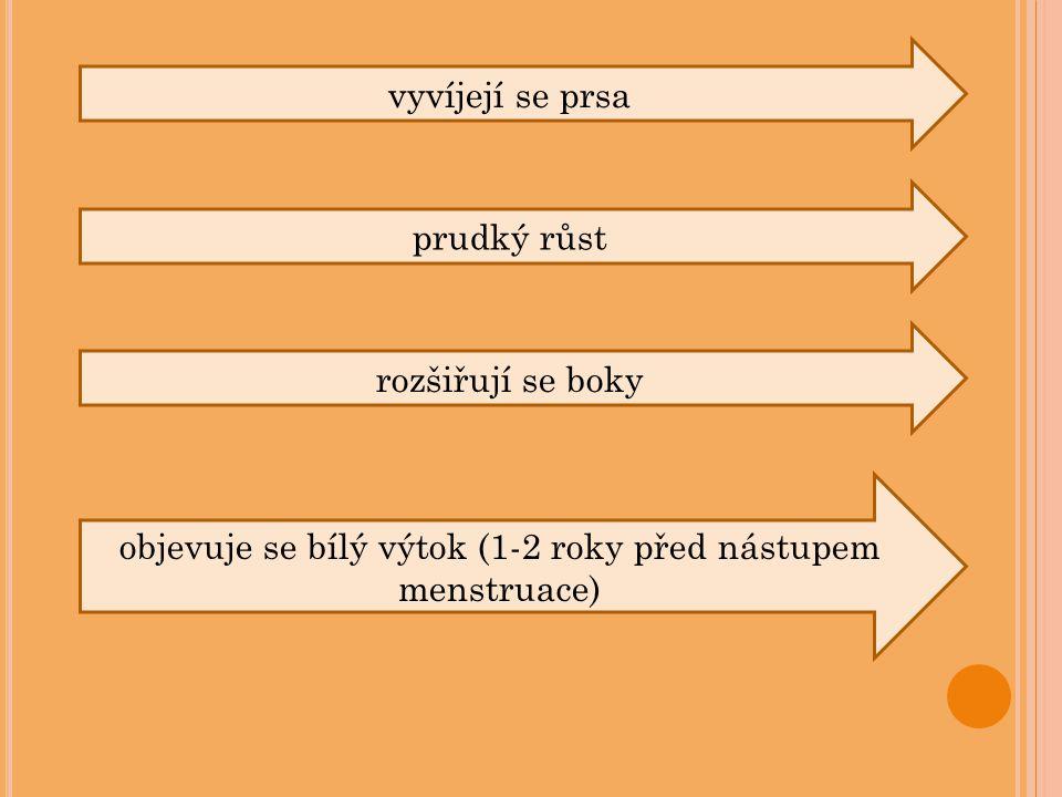 vyvíjejí se prsa prudký růst rozšiřují se boky objevuje se bílý výtok (1-2 roky před nástupem menstruace)