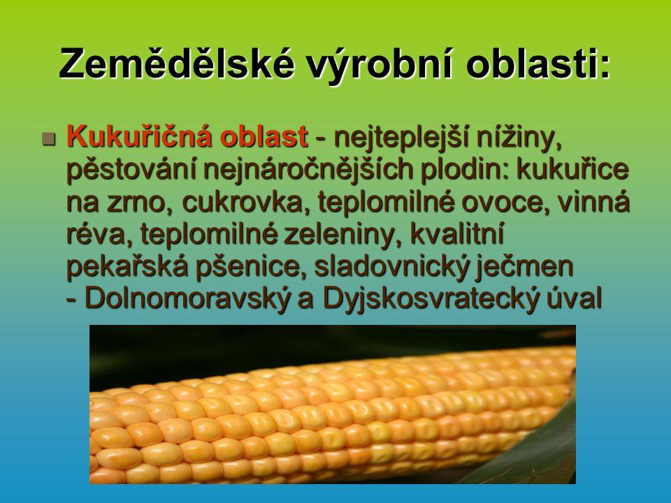 Zemědělské výrobní oblasti: Kukuřičná oblast - nejteplejší nížiny, pěstování nejnáročnějších plodin: kukuřice na zrno, cukrovka, teplomilné ovoce, vinná réva, teplomilné zeleniny, kvalitní pekařská pšenice, sladovnický ječmen - Dolnomoravský a Dyjskosvratecký úval Kukuřičná oblast - nejteplejší nížiny, pěstování nejnáročnějších plodin: kukuřice na zrno, cukrovka, teplomilné ovoce, vinná réva, teplomilné zeleniny, kvalitní pekařská pšenice, sladovnický ječmen - Dolnomoravský a Dyjskosvratecký úval