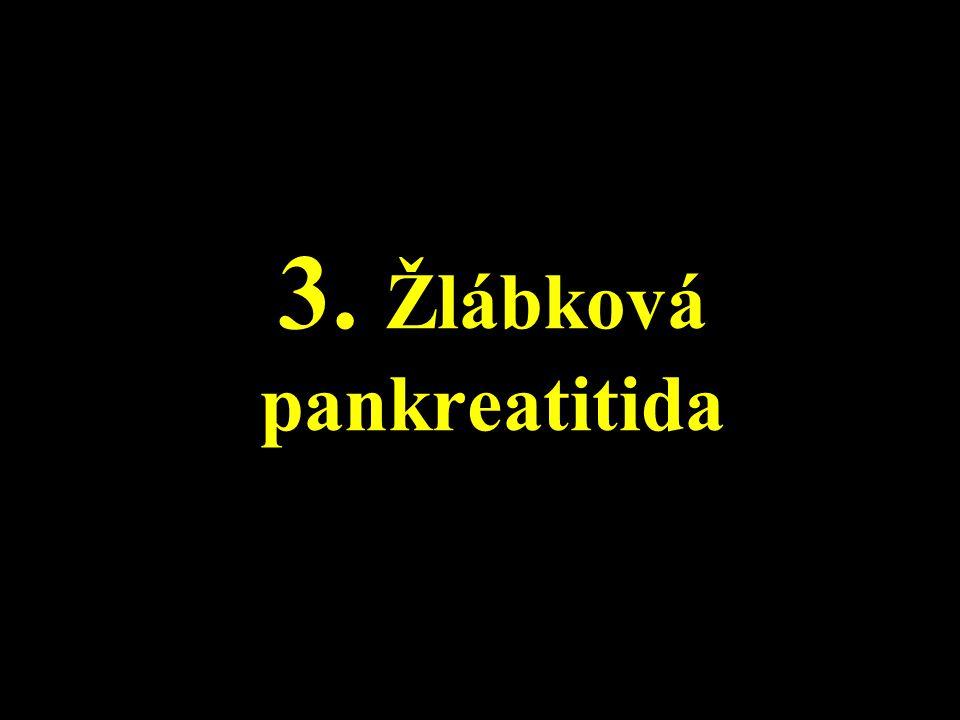 3. Žlábková pankreatitida