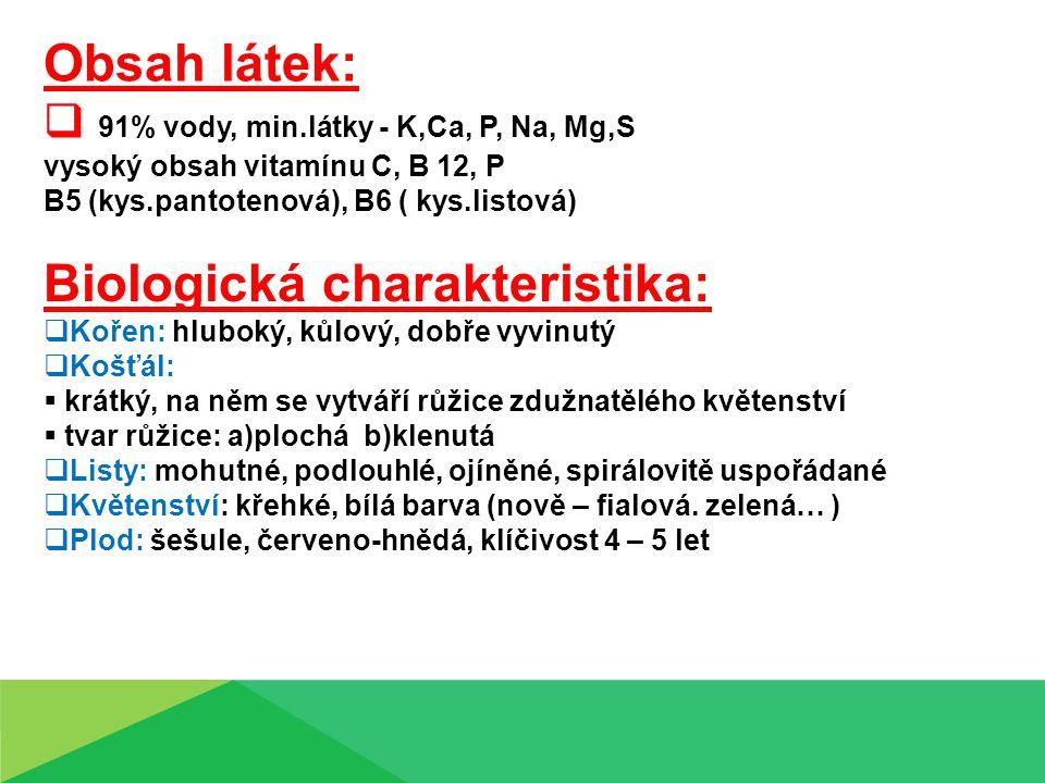 Obsah látek:  91% vody, min.látky - K,Ca, P, Na, Mg,S vysoký obsah vitamínu C, B 12, P B5 (kys.pantotenová), B6 ( kys.listová) Biologická charakteristika:  Kořen: hluboký, kůlový, dobře vyvinutý  Košťál:  krátký, na něm se vytváří růžice zdužnatělého květenství  tvar růžice: a)plochá b)klenutá  Listy: mohutné, podlouhlé, ojíněné, spirálovitě uspořádané  Květenství: křehké, bílá barva (nově – fialová.