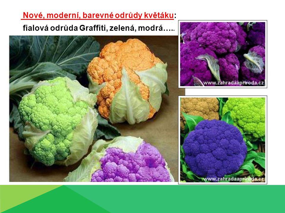 Nové, moderní, barevné odrůdy květáku: fialová odrůda Graffiti, zelená, modrá…..
