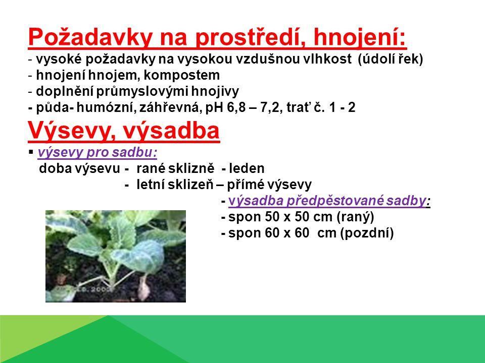 Požadavky na prostředí, hnojení: - vysoké požadavky na vysokou vzdušnou vlhkost (údolí řek) - hnojení hnojem, kompostem - doplnění průmyslovými hnojivy - půda- humózní, záhřevná, pH 6,8 – 7,2, trať č.