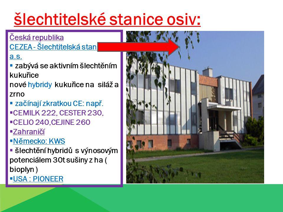 šlechtitelské stanice osiv: Česká republika CEZEA - Šlechtitelská stanice, a.s.  zabývá se aktivním šlechtěním kukuřice nové hybridy kukuřice na silá