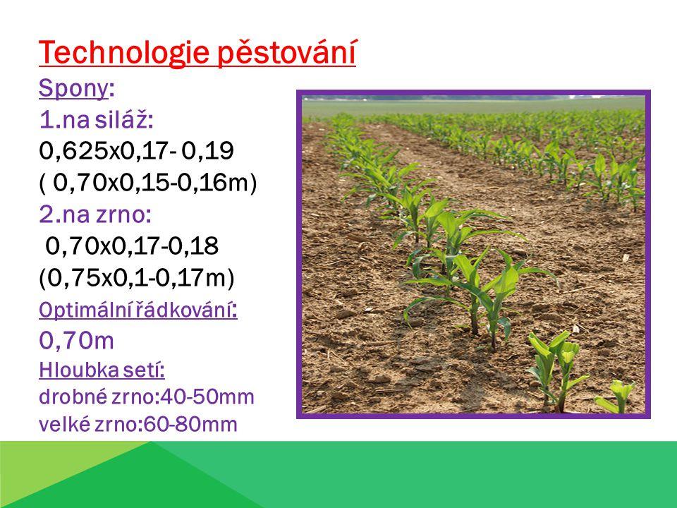 Technologie pěstování Spony: 1.na siláž: 0,625x0,17- 0,19 ( 0,70x0,15-0,16m) 2.na zrno: 0,70x0,17-0,18 (0,75x0,1-0,17m) Optimální řádkování : 0,70m Hl