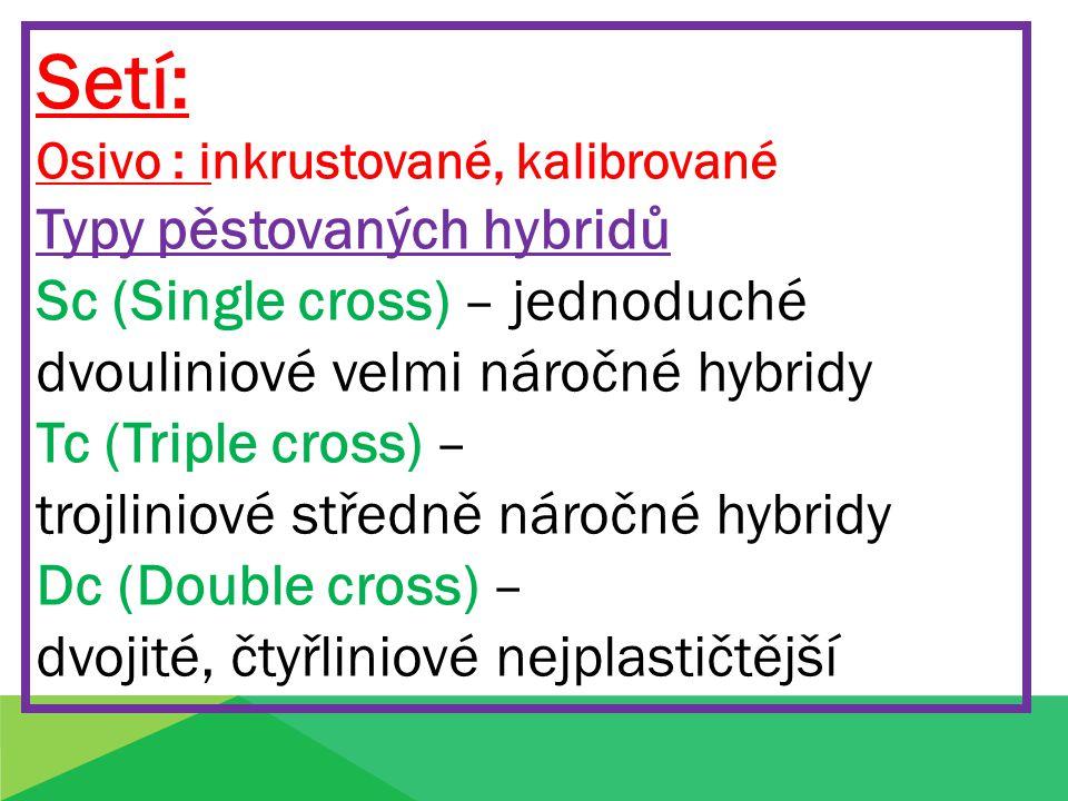Setí: Osivo : inkrustované, kalibrované Typy pěstovaných hybridů Sc (Single cross) – jednoduché dvouliniové velmi náročné hybridy Tc (Triple cross) –