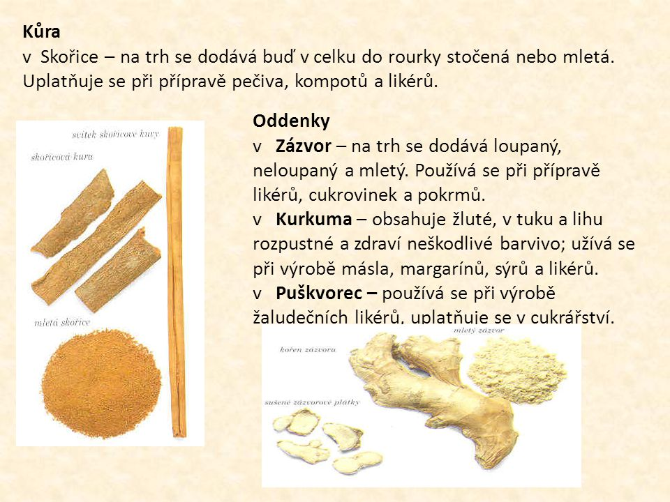 Kůra v Skořice – na trh se dodává buď v celku do rourky stočená nebo mletá. Uplatňuje se při přípravě pečiva, kompotů a likérů. Oddenky v Zázvor – na