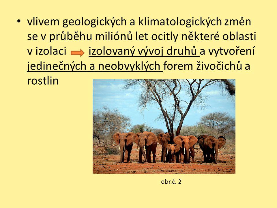 vlivem geologických a klimatologických změn se v průběhu miliónů let ocitly některé oblasti v izolaci izolovaný vývoj druhů a vytvoření jedinečných a