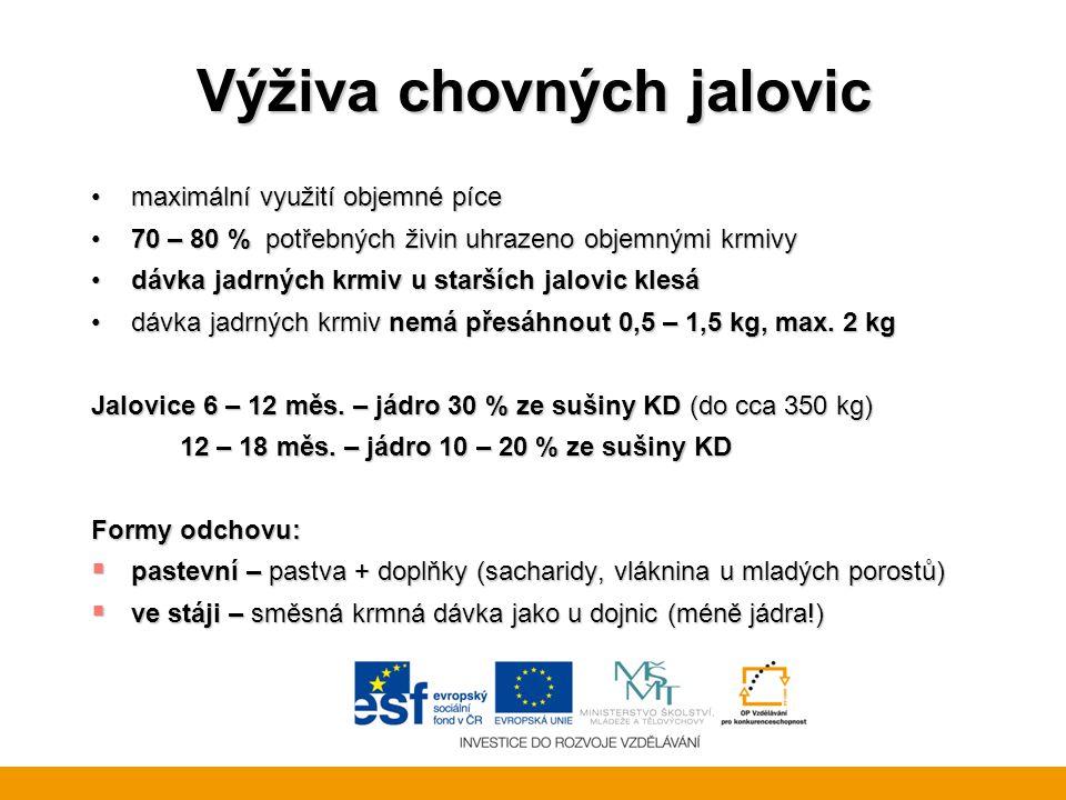 Výživa chovných jalovic maximální využití objemné pícemaximální využití objemné píce 70 – 80 % potřebných živin uhrazeno objemnými krmivy70 – 80 % potřebných živin uhrazeno objemnými krmivy dávka jadrných krmiv u starších jalovic klesádávka jadrných krmiv u starších jalovic klesá dávka jadrných krmiv nemá přesáhnout 0,5 – 1,5 kg, max.