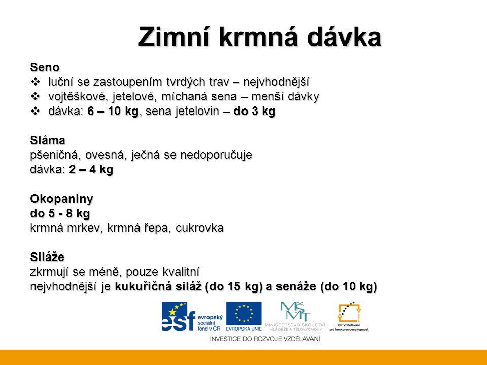 Zimní krmná dávka Seno  luční se zastoupením tvrdých trav – nejvhodnější  vojtěškové, jetelové, míchaná sena – menší dávky  dávka: 6 – 10 kg, sena