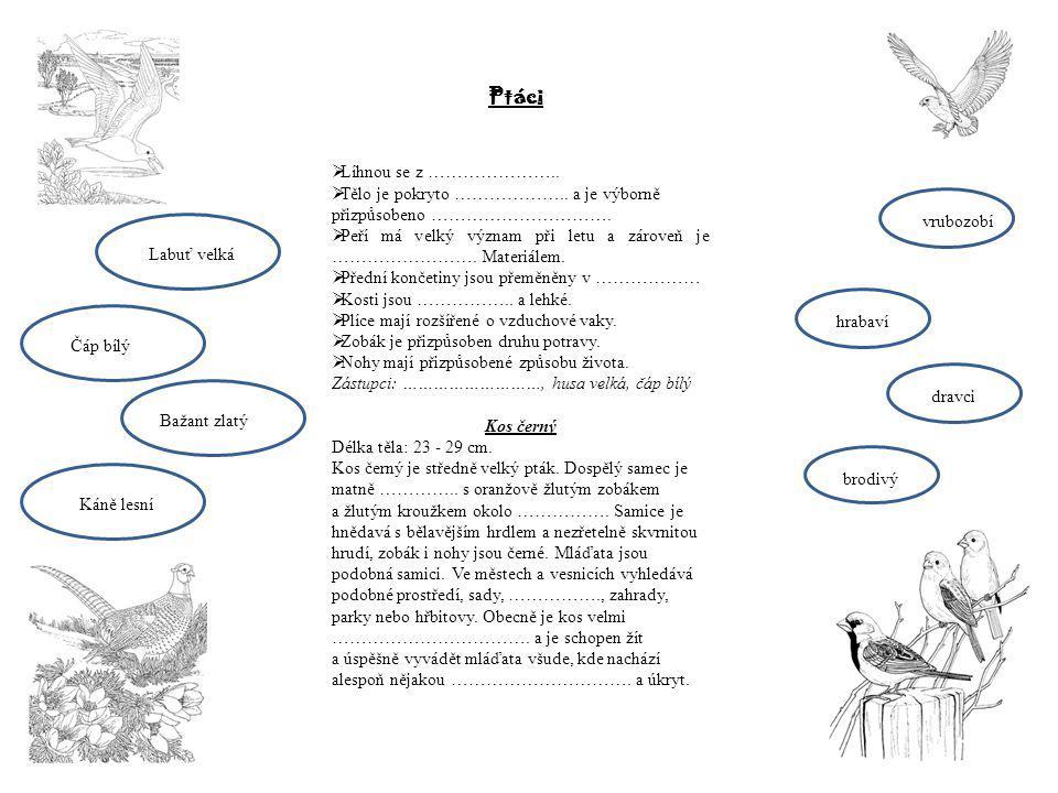 Ptáci  Líhnou se z ………………….. Tělo je pokryto ………………..