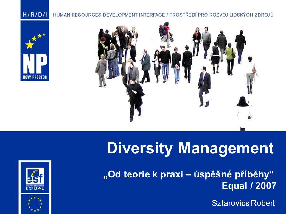 """Diversity Management Sztarovics Robert """"Od teorie k praxi – úspěšné příběhy"""" Equal / 2007"""